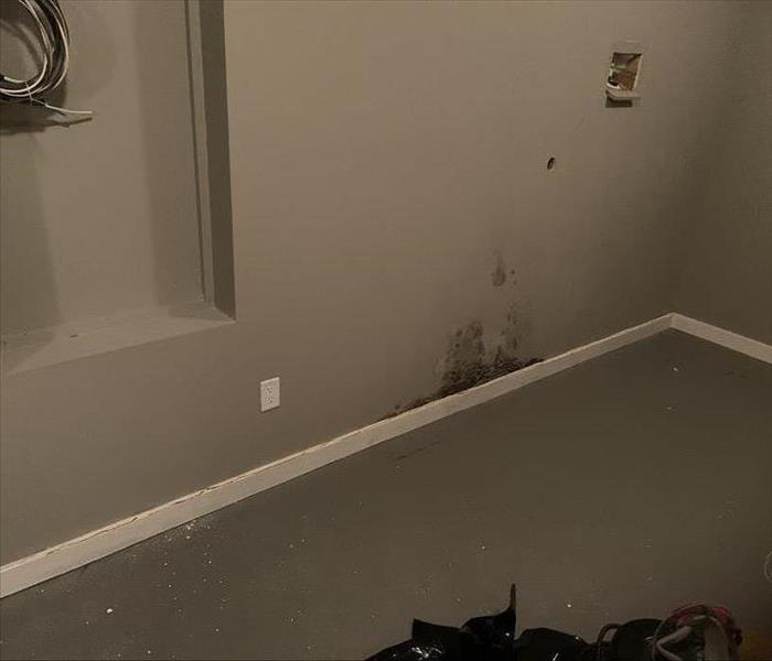 Mold growth on the wall because of water pipe leakage