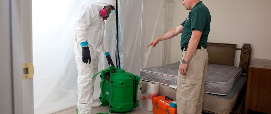 Vancouver, BC mold removal process